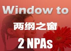 Windows to 2 NPAs