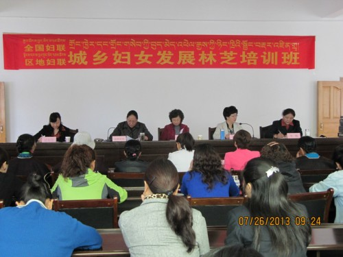 A training course aimed at promoting the development of urban and rural women in Nyingchi Prefecture, southwest China's Tibet Autonomous Region, opens on July 25, 2013. 
