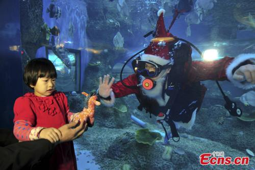 E China's Jinan Hosts Underwater Christmas Party