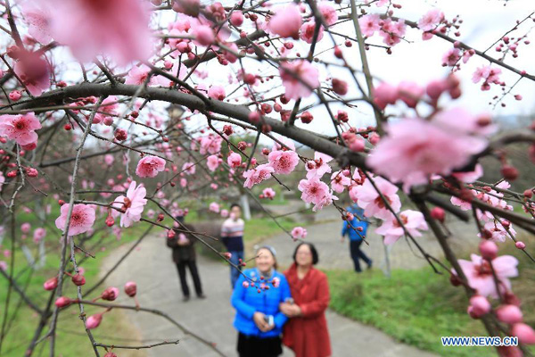People Enjoy Beautiful Early Spring Flowers Around China All China