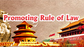 Promoting Rule of Law