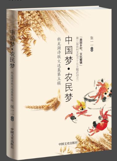 Yu Xiuhua: Female Chinese Poet Wins Farmers' Literary Prize