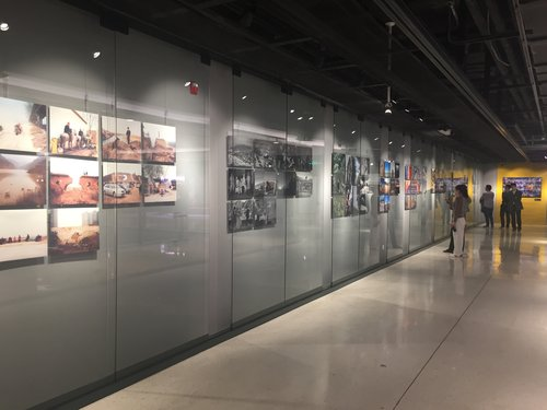 Nat Geo Unveils Eye-catching Photo Exhibit in Beijing