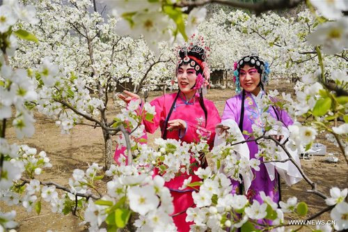 Opera Lovers in Costumes Perform at Pear Garden in N China