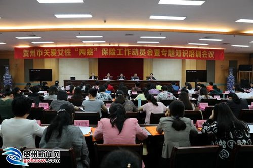 Meeting in South China Draws More Attention to Cervical, Breast Cancer