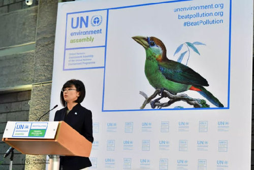 UN Official Devotes Herself to Eco-conservation, Protection of Elephants