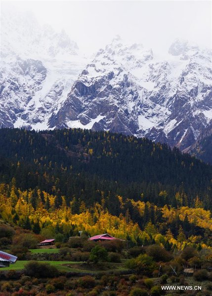 Autumn Scenery in Southwest China's Tibet