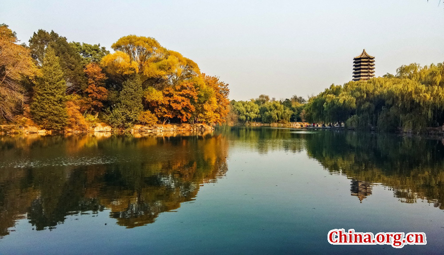 Scenery of Peking University in Fall