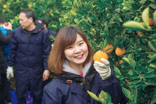 Cambridge Grad Promotes Innovative Fruit-growing Business in Hometown
