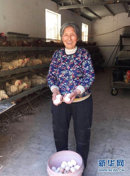 Unwavering Woman Escapes Poverty by Raising Chickens in NW China