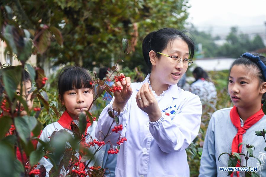 Primary Students Learn Traditional Chinese Medicine in Zhejiang, China