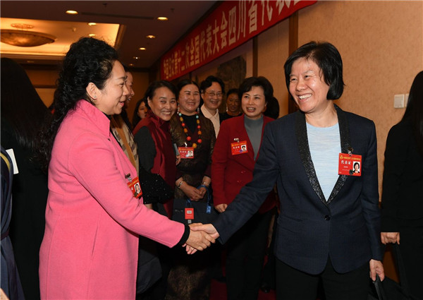 Shen Joins Sichuan Delegation at 12th NWC Meeting